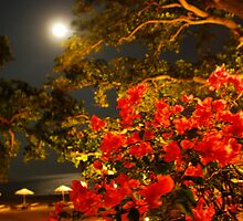 Tandjung Sari under the full moon in Bali by Michael Brewer