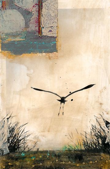 Pelican Into The Sun by Elena Ray