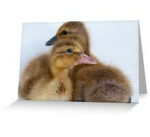 It Takes Two! Greeting Card