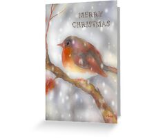 robin watercolor merry christmas Greeting Card