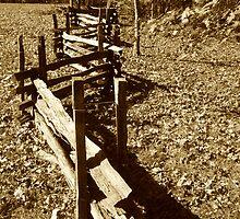 Zig Zag Wood Fence by Jonathan  Green