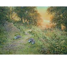 Badger Lane Photographic Print