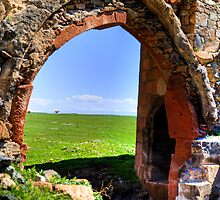 Cows seen through ancient arch  by Erdj