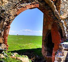 Cows seen through ancient arch  by Erdj