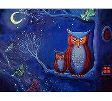 The Forest At Night - Owl Art  Photographic Print