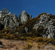 Roche rock  by imageworld