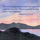 Faithfulness - Lamentations 3:22-23 by Diane Hall