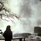 Russell Falls, Tasmania  by Michael  Moss