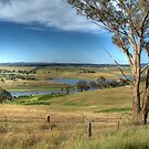 Scenery near Cowra by Bryan Cossart