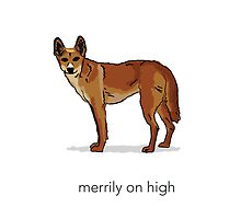 Dingo Merrily On High by dave  gregory