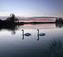 Swan Lake Sunset by Yagosan