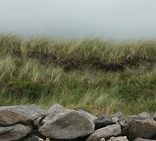 Beach, Ring of Kerry, Ireland by KateLowry