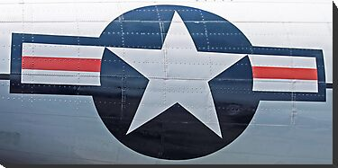 USAF Star Emblem by Karl R. Martin
