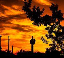 Arizona Sky by George Lenz