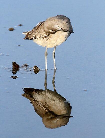 Mirror Mirror by Michael  Moss