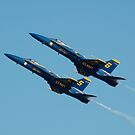 Blue Angels by Ernesto Lopez