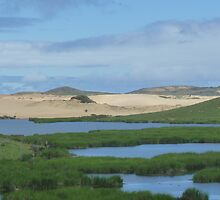 Dunes and Lagoons by Carol Walker
