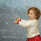 First Snow by susi lawson