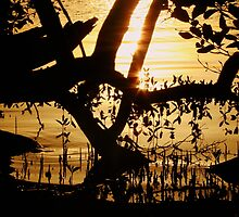 Golden Mangrove by Martice