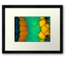 Parrotfish scales Framed Print