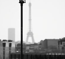 Who's the tallest ? by Sébastien FERRAND