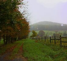 Autumn's Misty Rain by Linda Costello Hinchey