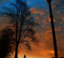 Park lampost dawn by Mike Ashton