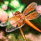 Orange Dragonfly on a Blade of Grass by Gayle Utter