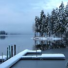 Winter reflections Shawnigan Lake  by TerrillWelch