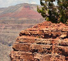 Grand Canyon - West Rim by djphoto