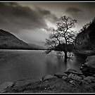 Ullswater at Dawn by Shaun Whiteman