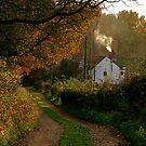 """Woodpit Cottage In Autumn"" by Bradley Shawn  Rabon"