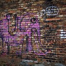 Pink Elephant by Chintsala