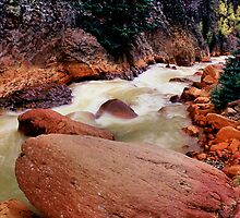 Along Canyon Creek, Ouray, Colorado by Tom Fant