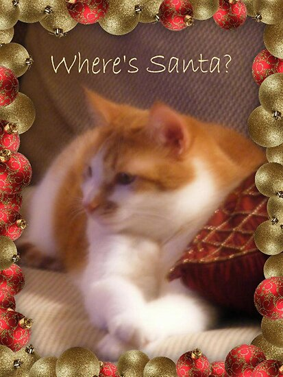 Where's Santa? by Marie Sharp