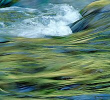 Green streaming - Scheibum by CapturesOfLight