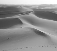 Dunes undulating to the horizon by Christine Oakley