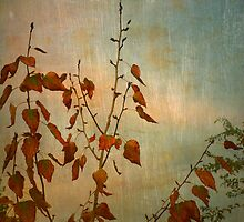 The Small Pieces of Autumn by Tara  Turner