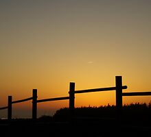 Sunset fence by Jean Knowles