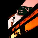 SIGNS OVER WILLIAMSBURG by Gilad
