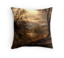 Sneak a Peek at the Snake River  Throw Pillow