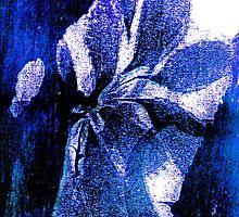 Flower Lady by Charlotte Harold