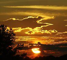 Sunset by Linda Yates