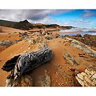 Wild Tarkine Coast - Photography Trip 2009 by Tarkine Trails Tasmania