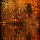 restes d&#x27;automne by Aimelle