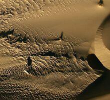Oryx shadow | Skeleton Coast by Olwen Evans