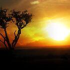 Sunrise Tree - Masai Mara by StuartGLoch