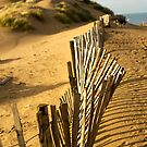 Fence at Formby Beach by Stephen Knowles