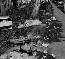 Urban Decay Series-Just Dumped by bunnij