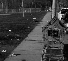 Urban Decay Series--The Abandoned Shopping Cart by bunnij